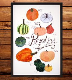 Pumpkins Art Print | Not all pumpkins are those giant orange tasteless beasts we ca... | Posters