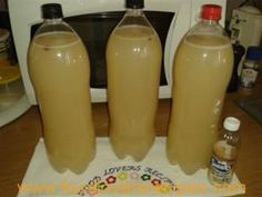 West African Food, South African Recipes, Beer Recipes, Baking Recipes, Pineapple Beer, Homemade Ginger Beer, Custard Pudding, Ginger Ale, Party Drinks
