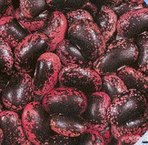 Akahana Mame - This rare Japanese pole bean is also called 'flower bean'. The plant produces red flowers and pods up to long. The mottled beans are a deep red/purple color on a black background and wrinkle when dry. Health Benefits Of Beans, Bean Garden, Violet Rouge, Bean Varieties, Fruits And Veggies, Vegetables, Kinds Of Beans, Runner Beans, Legumes