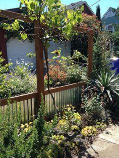 Garden Fences   Flickr   Photo Sharing!