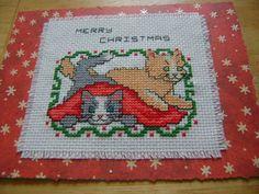 cross stitch cats Christmas card