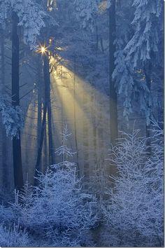 Ancient Winter Light