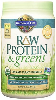 Garden of Life Organic Greens and Protein Powder - Raw Protein and Greens with Probiotics/Enzymes, Vegan, Light Sweet, 23.2oz (651g) Powder
