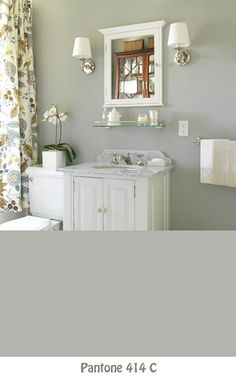 Nice idea for our bathroom - except I would change the wall color to perhaps a aqua blue maybe?