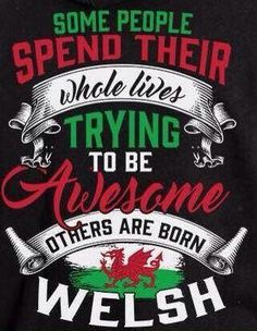 Cymru am byth Wales Rugby, Wales England Rugby, Wales Flag, Welsh Sayings, Welsh Tattoo, Learn Welsh, Welsh Language, North Wales, Wales Uk