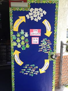 Apples and ABC's: Adventures in Kindergarten: Life cycle of a frog and ADORABLE frog book! Now THIS is a bulletin board I can get behind! EVERY kid helps make EVERY part of the bulletin board! First Grade Science, Kindergarten Science, Teaching Science, Science For Kids, Science Room, Science Fun, Science Ideas, Preschool Ideas, Frog Activities