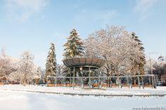 Kiskunhalas, city, winter, snow, white, town square, cold, canon, by Ramona Rekasi