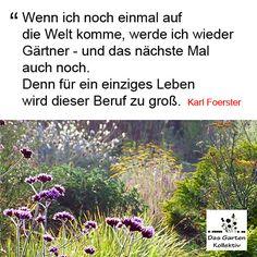 Karl Foerster Zitat