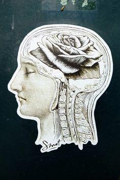 'rose in the head' ... smot, paris 20 - villa de l'ermitage ... urban art ...