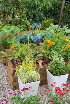 Spectacular puristischer Garten gut beleuchteter Garten mit vielen gr nen Pflanzen und schicke Gartenm bel Kreative Ideen f r Gartenzubeh r Pinterest Und and