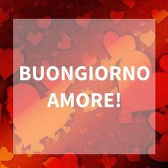 Quale immagine migliore per dire buongiorno amore? Usa i tasti social e condividi o scarica l'immagine e usala…