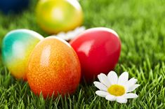 Natural way to dye Easter eggs
