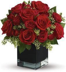 Red Roses  beautiful