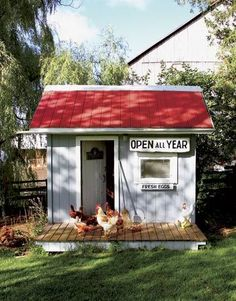 Raising chickens has gained a lot of popularity over the past few years. If you take proper care of your chickens, you will have fresh eggs regularly. You need a chicken coop to raise chickens properly. Use these chicken coop essentials so that you can. Chicken Coop Designs, Cute Chicken Coops, Chicken Coup, Backyard Chicken Coops, Chicken Coop Plans, Building A Chicken Coop, Chickens Backyard, Chicken Race, Chicken Coop Decor