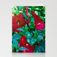 Giant Poppies Stationery Cards