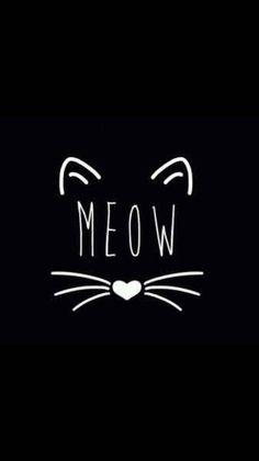 Meow que fofinho Más