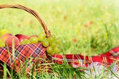 """A literatura lituana é tema do próximo encontro na Casa das Rosas que acontece neste domingo, às 15h, com entrada Catraca Livre.A programação contará se completa com um piquenique, no jardim, em meio a um bate-papo com a tradutora Regina Umaras e a ilustradora Melissa Lagôa, do livro Contos Maravilhosos. O dia será de homenagem...<br /><a class=""""more-link"""" href=""""https://catracalivre.com.br/sp/agenda/barato/literatura-da-lituania-e-piquenique-no-jardim-na-casa-das-rosas/"""">Continue lendo »</a>"""