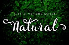 Natural 30% off by fontdroe on Creative Market