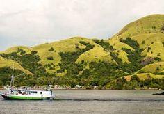 17-Aug-2014 11:51 - TOERISTEN VERMIST NA BOOTONGELUK INDONESIË. Vijftien buitenlandse toeristen worden vermist na een bootongeluk in Indonesië. Tien mensen uit Spanje, Groot-Brittannië en Nieuw-Zeeland zijn gered nadat de boot was gezonken tussen de eilanden Lombok en Komodo, een tocht die drie dagen kan duren. Welke nationaliteit de vermiste passagiers hebben, is niet bekend.