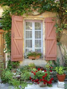 european garden: window and potted flower plants and vines