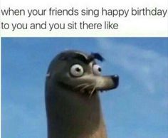 When Your Friends Sing Happy Birthday to You and You Sit There Like Relatable Stupid Funny Memes, Funny Laugh, Funny Relatable Memes, Funny Posts, Hilarious, Funny Stuff, Random Stuff, Conservative Memes, Singing Happy Birthday