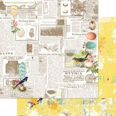 This is the Newsworthy paper from the Nest collection by Webster's Pages.