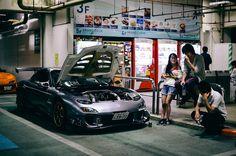 日本の国内市場 : Photo