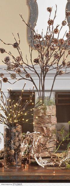 twigs & pinecones