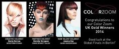2014 Color Zoom İngiltere Altın Finalistleri