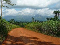 Mount Nimba, Guinea