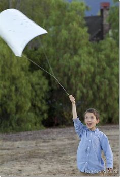 Let's Go Fly a Kite: Kites for Kids that Really Fly via @mamasmiles