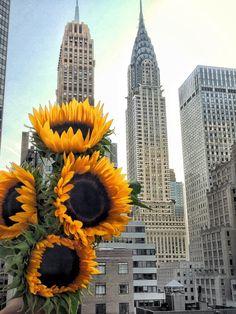 ❤️Chrysler Building New York City