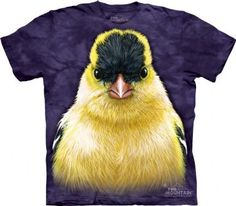 Goldfinch T-shirt | Big Face Animals T-shirts | Bird Tees | The Mountain®