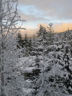 Pick a good one! I Love Winter, Its Cold Outside, Whistler, Winter Wonderland, Vancouver, The Outsiders, Snow, Places, Perspective