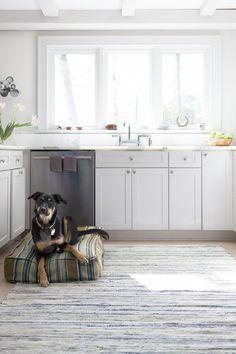 dash and albert rug + woof pet bed
