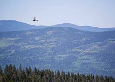 Ride the Highest Zipline in the U.S. at Angel Fire Resort : Discovery Channel