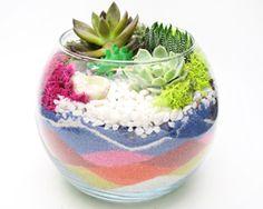 Plant Nite Rose Bowl Sand Art