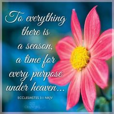 Ecclesiastes 3:1 To every thing there is a season, and a time to every purpose under the heaven. Description from pinterest.com. I searched for this on bing.com/images