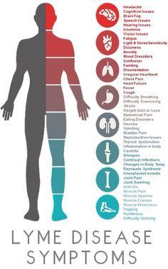Lyme Disease symptoms. Not an exhaustive list.