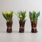 Flowering Twig Stacks, Set of 3, $14.97