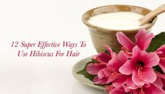 In Ayurveda, Hibiscus is one of the most renowned herbs for promoting hair growth. Diy Hair Care, Hair Care Tips, Beauty Routines, Ayurveda, Diy Hairstyles, Hair Growth, Hibiscus, Natural Hair Styles, Herbs