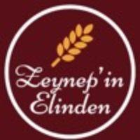 Zeynep'in Elinden