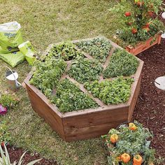 Raised garden beds are ideal for growing veggies, herbs and flowers that have many advantages. It would be helpful for planting a little garden. Diy Hanging Planter, Wood Planter Box, Wood Planters, Planter Box Designs, Planter Box Plans, Raised Garden Bed Plans, Building Raised Garden Beds, Raised Vegetable Gardens, Starting A Vegetable Garden