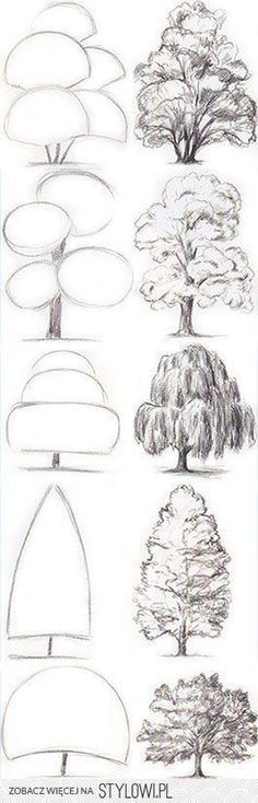 42 Fantastiche Immagini Su Alberi Di Disegno Alberi Di
