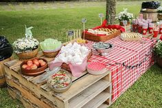 Colorful picnic with homemade and traditional food – Constance Zahn Camping Parties, Outdoor Parties, Summer Parties, Picnic Theme, Picnic Birthday, Picnic Decorations, Decoration Table, Farm Party, Bbq Party