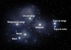 Star Cluster Sing this Matariki waiata (song) with your tamariki (kids) and learn the names of the seven Matariki stars. Space Theme Classroom, Maori Symbols, Six Sisters, Star Family, Star Formation, Maori Art, Whirlpool Galaxy, Star Cluster, Andromeda Galaxy