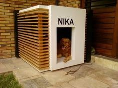 There are many kinds of pet dog toys readily available for you to select from. So, when searching for a suitable toy for your pooch keep in mind to consider your pet dog's age and activities initially. Modern Dog Houses, Cool Dog Houses, Dog Grooming Shop, Dog House Plans, House Dog, Dog Furniture, Dog Rooms, Pet Home, Outdoor Dog