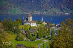 The stunning view to the old City of Spiez on the Lake Thun, in Switzerland. Lake Thun, Old City, Stunning View, Switzerland, Castles, Old Things, Mansions, House Styles, Crosses