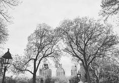 Washington Square Park New York. Lembranças de uma manhã deliciosa de passeio nesse parque. No blog tem um roteiro pelo West Village em Nova York conto tudo que conheci por lá. Só clicar! http://ift.tt/1CaVNdL __________________________________ Parceiros: @Atuallehd @Blogpatricinhanos30 @insanamentetripsoficial @Luxuosidades @Que_viagem #idasevindasblog #idasevindasdacarol #manhattan #washingtonsquarepark #nyc #bigapple #usa #dicasdeviagem #blogdeviagem #travelblog #traveltips #picoftheday…