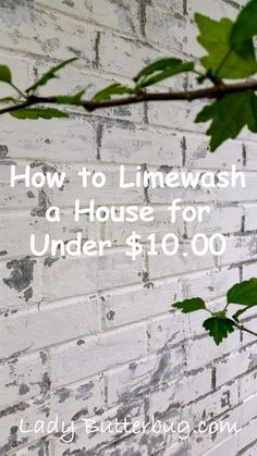 How to limewash your exterior brick for under $10.00 at Lady Butterbug blog.